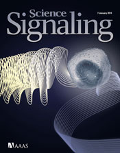 2013�FSignaling Breakthroughs of the Year