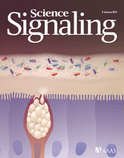 2014�FSignaling Breakthroughs of the Year