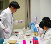 ピペットマンを使って染色に必要な試薬を計り取っています。