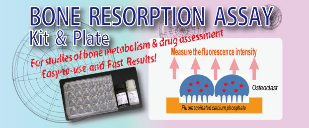 BONE RESORPTION ASSAY KIT