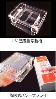 電気泳動用装置「i-MyRun II」