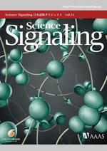 Science Signaling ��{��Ń_�C�W�F�X�g�@��11��