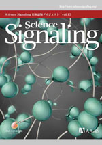 Science Signaling 日本語版ダイジェスト 第13号
