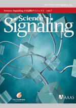 Science Signaling 日本語版ダイジェスト 第7号