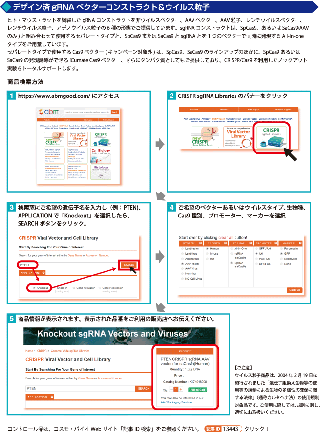 CRISPR-Cas9 ゲノム編集ツール