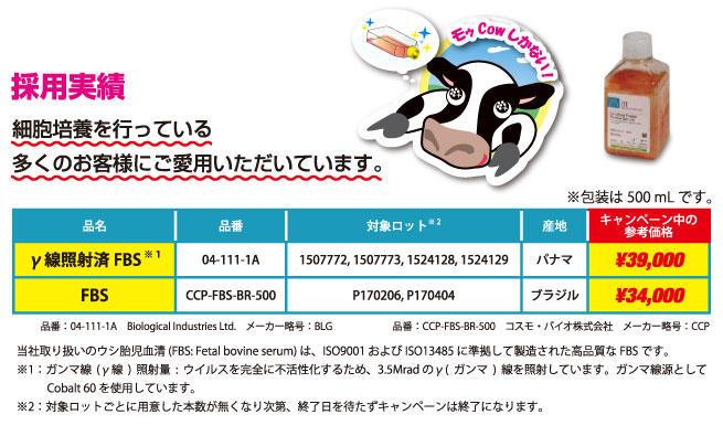 campaign-blg-ccp-1709_01.jpg