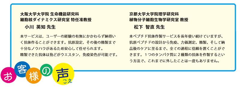 【お客様の声】●大阪大学大学院 生命機能研究科 細胞核ダイナミクス研究室 特任准教授 小川 英知 先生:本サービスは,ユーザーの経験の有無にかかわらず納得いく抗体作ることができます。抗原設定,その後の精製まで十分なノウハウがあるため安心して任せられます。精製できた抗体は殆どがウエスタン,免疫染色が可能です。 ●京都大学大学院理学研究科 植物分子細胞生物学研究室 教授 松下 智直 先生:本ペプチド抗体作製サービスを長年使い続けていますが、抗原ペプチドの設計から免疫、力価測定、精製、そして納品後のケアに至るまで、全ての過程に信頼を置くことができます。1つのタンパク質に2種類の抗体を作製するという方法で、これまでに外したことは一度もありません。