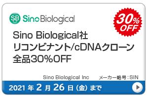 Sino Biological社 リコンビナント/cDNAクローン全品30%OFF キャンペーン 期間:2021年2月26日(金)まで