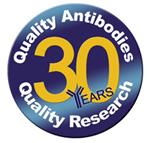 低エンドトキシンアザイドフリー(LE/AF)抗体