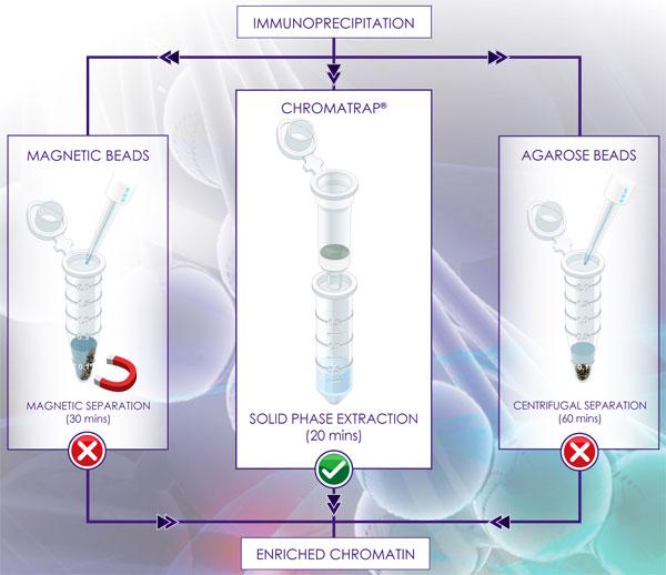高性能固相カラムによるクロマチン免疫沈降アッセイ(ChIP)