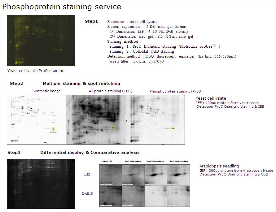 納品データ例(1)