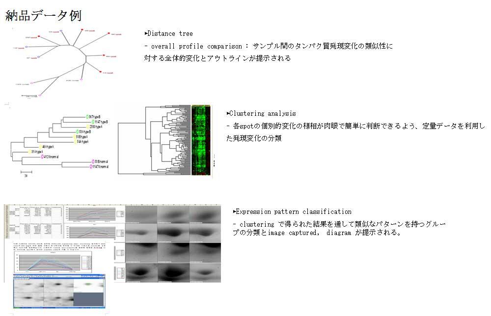 納品データ例(3)