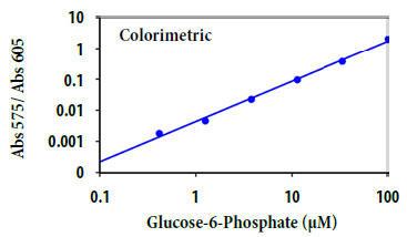 G6Pの用量反応
