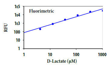 D-乳酸の用量反応