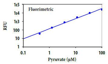 ピルビン酸塩の用量反応
