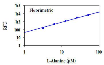 L-アラニンの用量反応