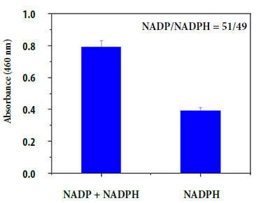 アッセイキットを用いたNADP / NADPH比の測定