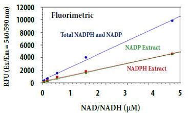 トータルNADP/NADPHとその抽出物の用量反応測定
