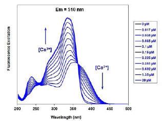 蛍光励起スペクトル