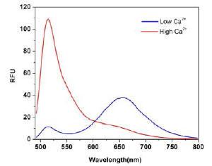 蛍光発光スペクトル