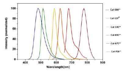 ノーマライズした蛍光スペクトル