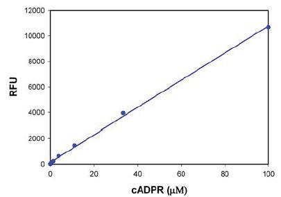 Amplite(TM) Fluorimetric cADP-Ribose Assay Kit (品番20305) によるcADPR濃度の検出