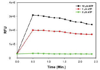 ATP刺激した CHO-K1細胞の継時的細胞内カルシウム応答 (プローサイトメトリー解析)