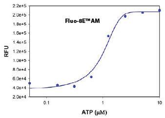 ATP刺激した CHO-K1細胞の細胞内カルシウム応答