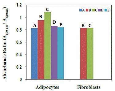 分化した3T3-L1脂肪細胞および3T3-L1線維芽細胞における2DG取り込み測定