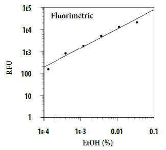 エタノール用量反応