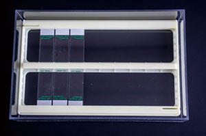 RNAscope® EZ-Batch™ Slide Processing System