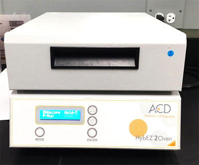 HybEZ™ II Hybridization System With EZ-Batch Slide System