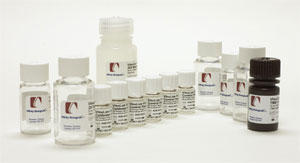 VisuLize 第 IX 因子抗原 ELISA キット