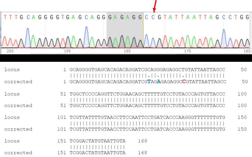 ASC_crispr_genome_editing_ipscs_2.png