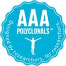 AAA ポリクローナル抗体