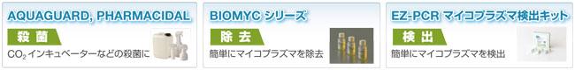 BLG_Mycoplasma_banner.jpg