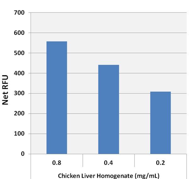 グリコーゲンアッセイキット(蛍光)によるニワトリ肝臓でのグリコーゲン検出