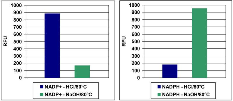 NADP+/NADPH の検出
