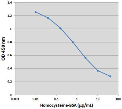 Homocysteine-BSA スタンダードカーブ