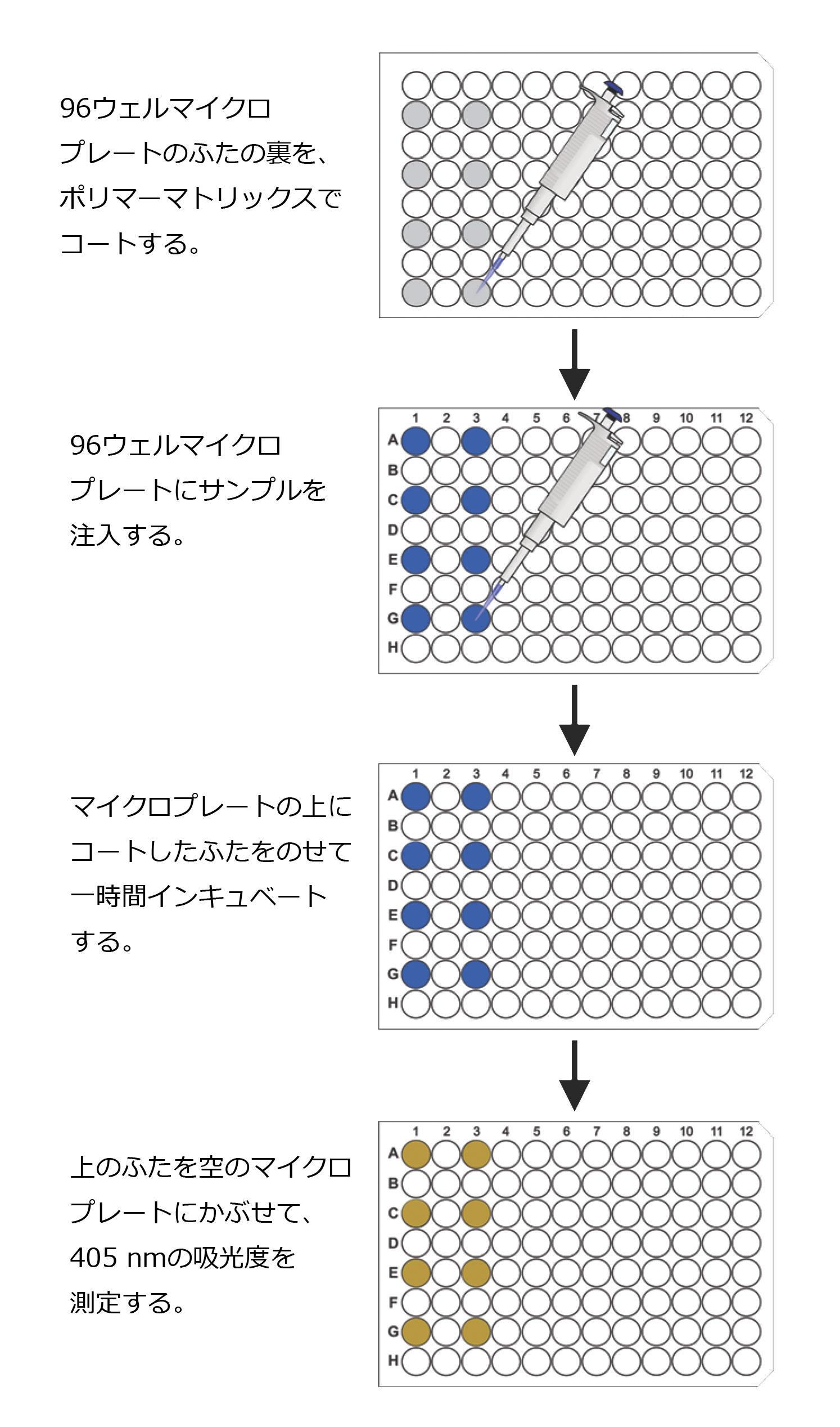遊離硫化水素ガスのアッセイプロトコールの略図
