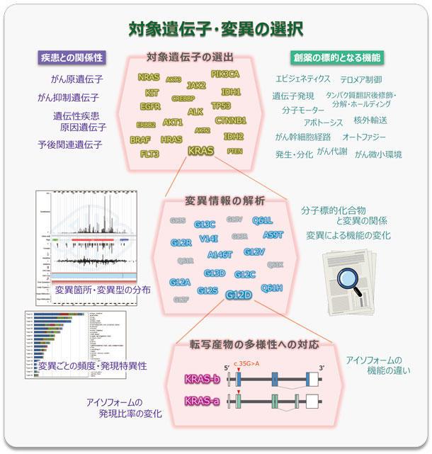 対象遺伝子・変異の選択