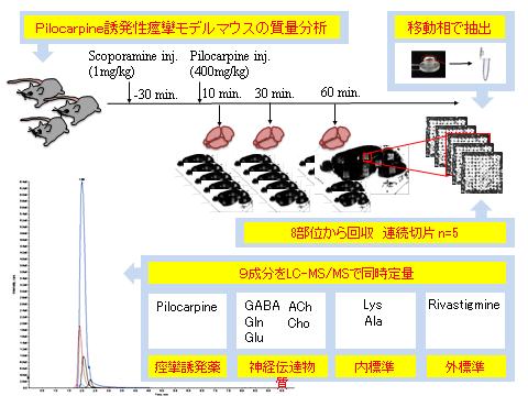 CSR_Transmittome_07_Pilocarpine_mouse_model.png