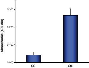 カルペプチンによるRhoAの活性化