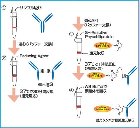 DMT_01440001_F-40-150-17S_02.jpg