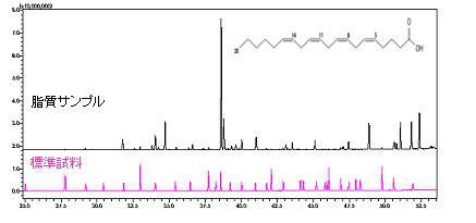 標準試料と脂質サンプルのクロマトグラム比較