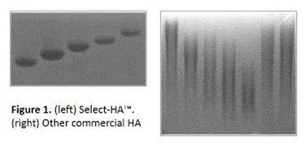 ヒアルロン酸研究用試薬 Select-HA(TM)