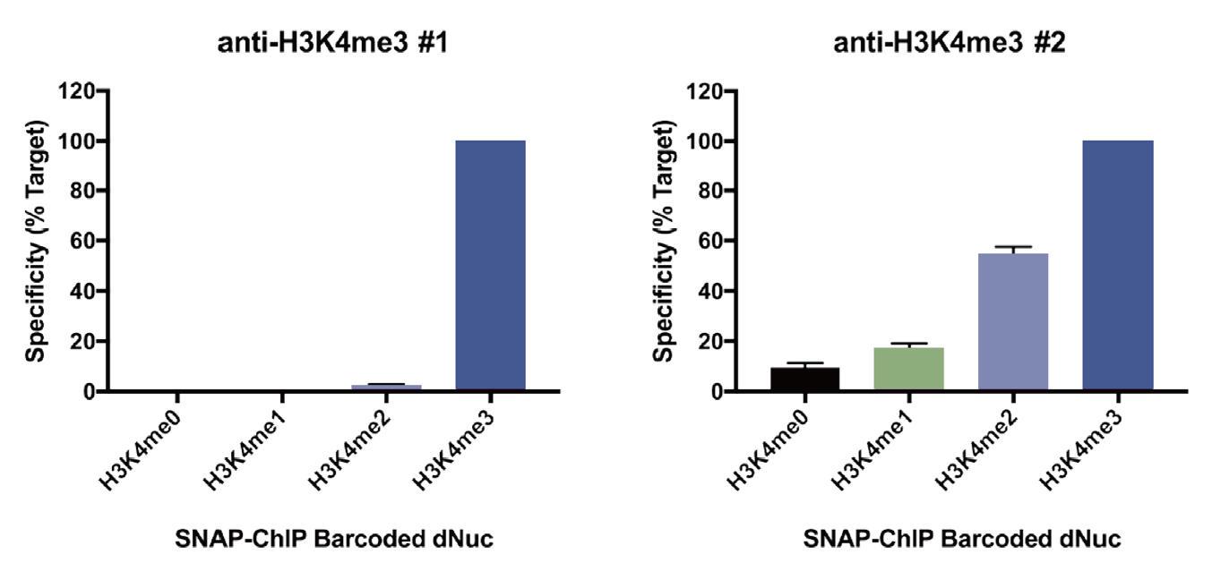 SNAP-ChIPによる抗体特異性の評価