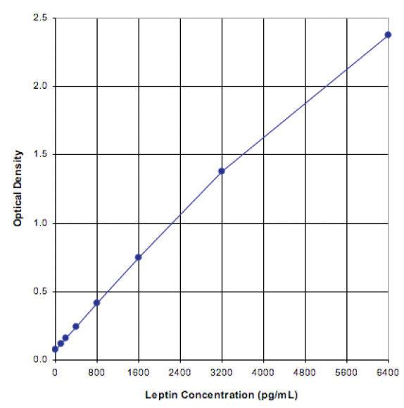 スタンダードカーブ - Leptin ELISA キット ラット