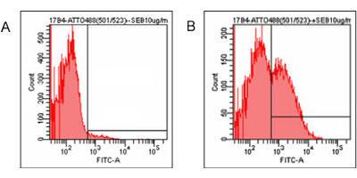 内在性ヒトLAG-3の検出