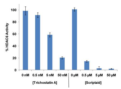 HDAC6による FLUOR DE LYS® HDAC Green 脱アセチル化のトリコスタチンA、Scriptaid 阻害